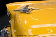Logos et mascottes des vehicules du nouveau monde