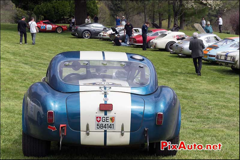 AC Cobra, n213, Pesteils Tour Auto 2013