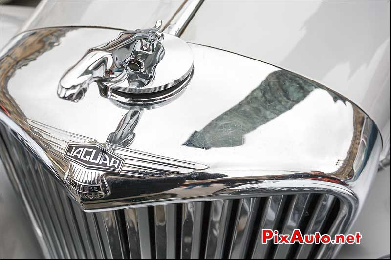 sigle jaguar mark V, reflet colonne vendome