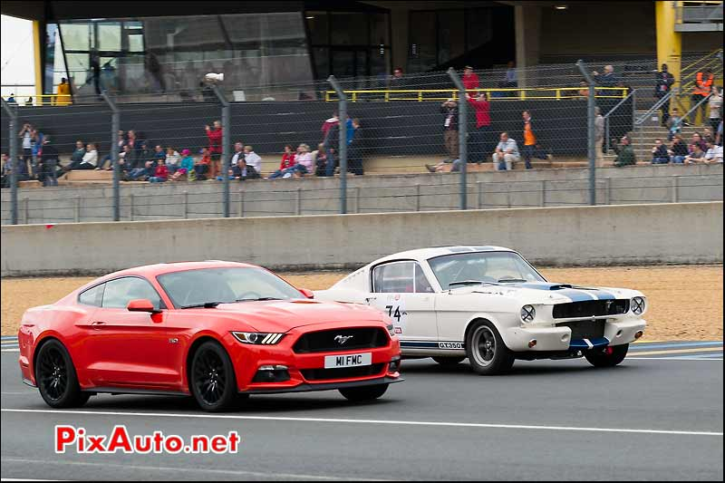 50e Anniversaire Ford Mustang, Le Mans Classic 2014