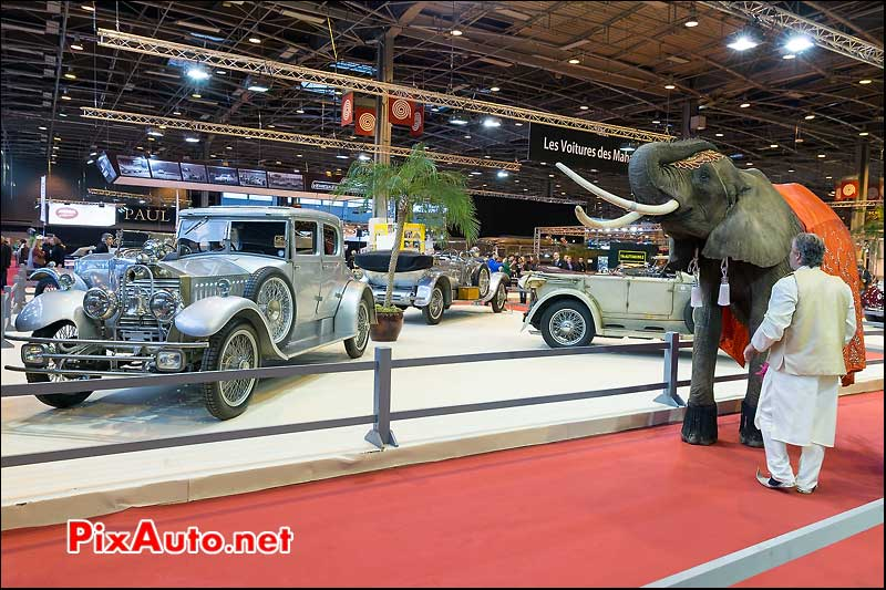 Voitures de Maharadjas et elephant, salon retromobile 2014