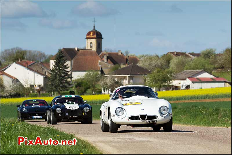 Alfa Romeo Tubular Zagato, AC-Cobra, Saint Marcel, Tour-Auto-Optic-2000