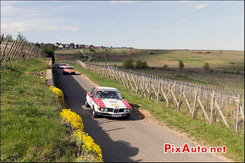 BMW 2800 CS, Vignes Alsace, Tour-Auto-Optic-2000