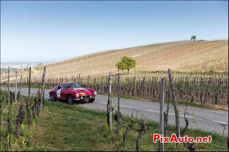 Ferrari 250 GT SWB, Vignes Alsace, Tour-Auto-Optic-2000