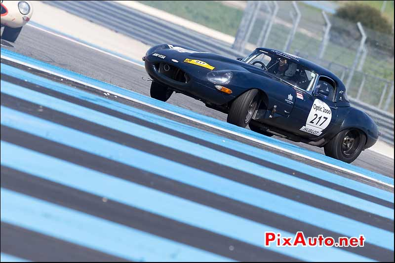 Jaguar E-Type n°217, circuit Paul Ricard, Tour-Auto-Optic-2000