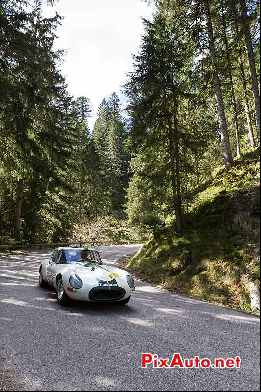 Jaguar E-Type, Foret Vosges, Tour-Auto-Optic-2000