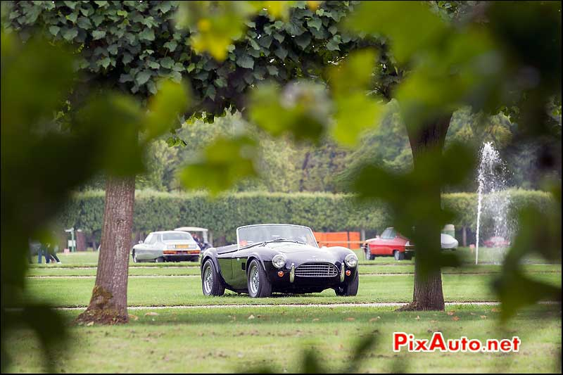 Chantilly-Arts-&-Elegance-Richard-Mille, AC Cobra 289ci