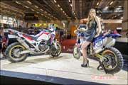 Salon-de-la-Moto 2015, Hotesse Honda CRF1000L Africa Twin