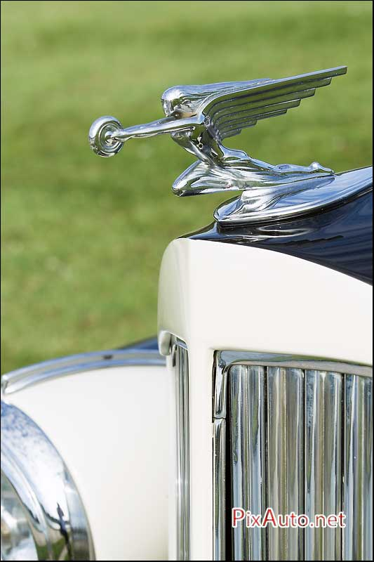 Chantilly-Arts-&-Elegance, Mascotte Automobile Packard Eight