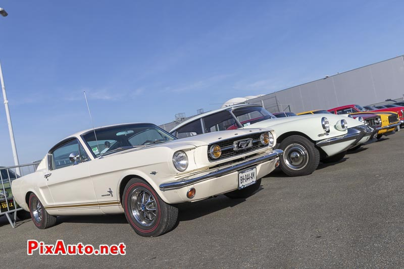 Salon Automedon, Ford Mustang 289ci