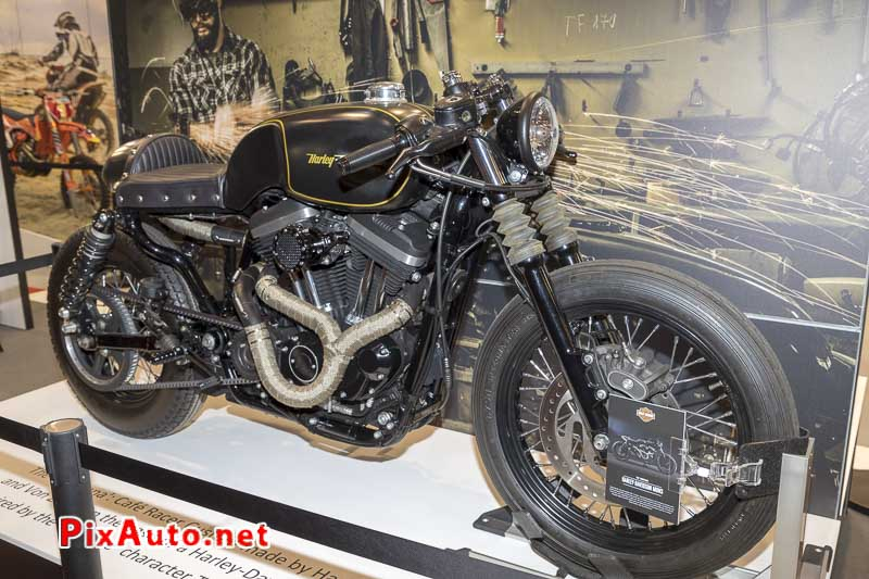 96e Brussels-Motor-Show, The Montana Harley-davidson Mons